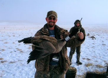 Canada Goose, Modoc Waterfowl Outfitters